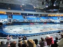 Олимпийский парк в Сочи. Лед