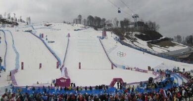 Ски-кросс среди женщин. Олимпиада 2014