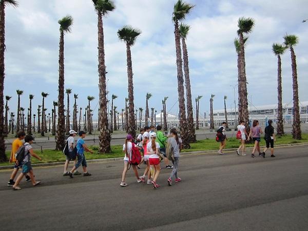 Олимпийский парк в День защиты детей. Пальмы