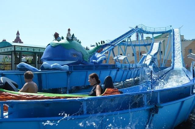 Олимпийский парк. Сочи Парк. Чудо-юдо рыба-кит