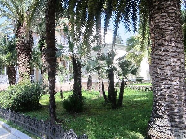 Park Dendrariy. Muzey Villa Nadezhda. Dom