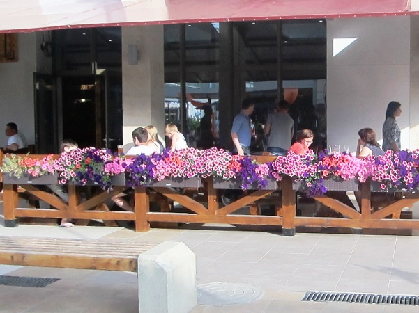 Фестиваль Mandarin Fest. Кафе