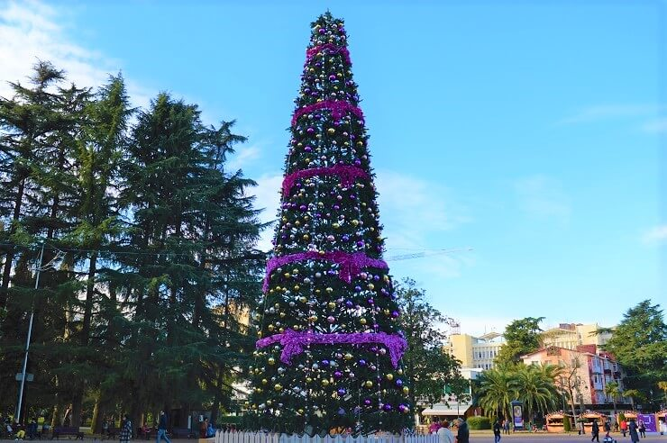 Главная елка Сочи