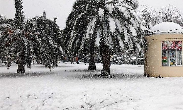 В Сочи выпал снег.