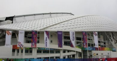 Год после Олимпийских игр