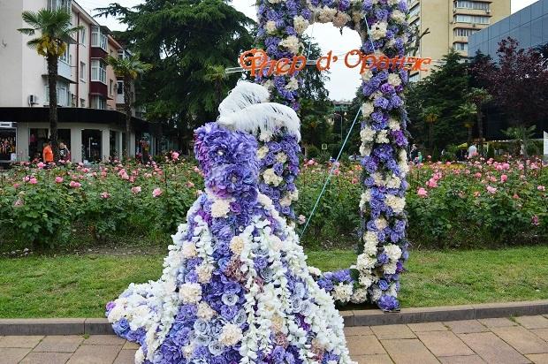 Праздник цветов в Сочи.  Фледоранж. Рамка