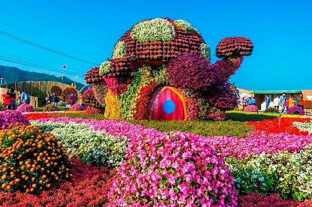 Праздник цветов в Сочи.  Тайвань