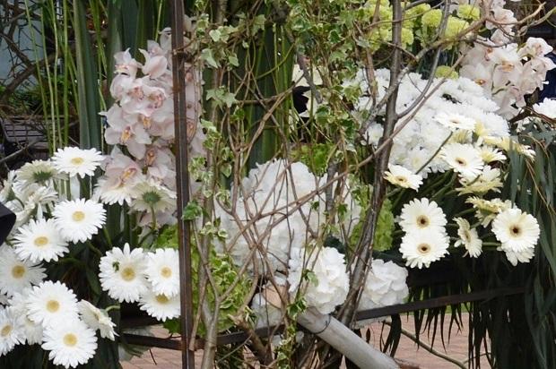 Праздник цветов в Сочи5