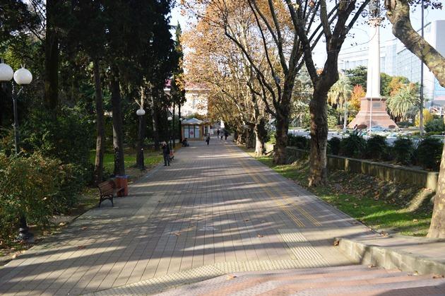 Курортный проспект в Сочи, Аллея