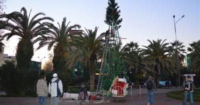 Установка елки в Сочи