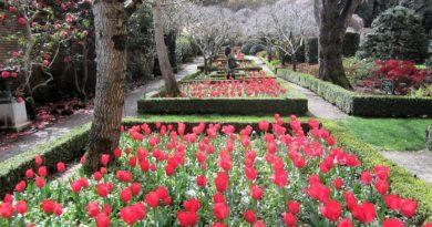 Сады Филоли. Калифорния.