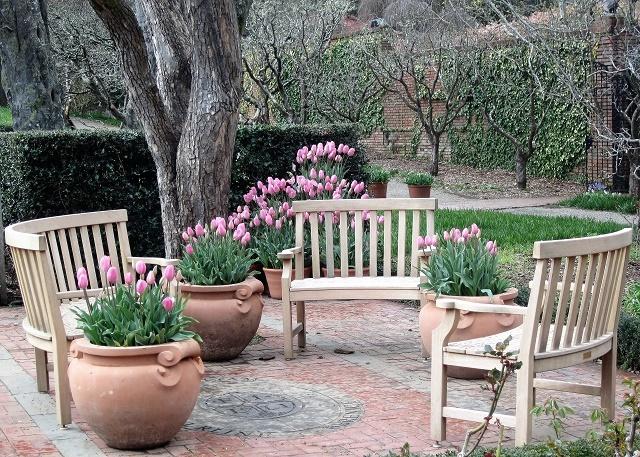 Сады Филоли. Тюльпаны2