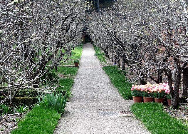 Сады Филоли. Тюльпаны5