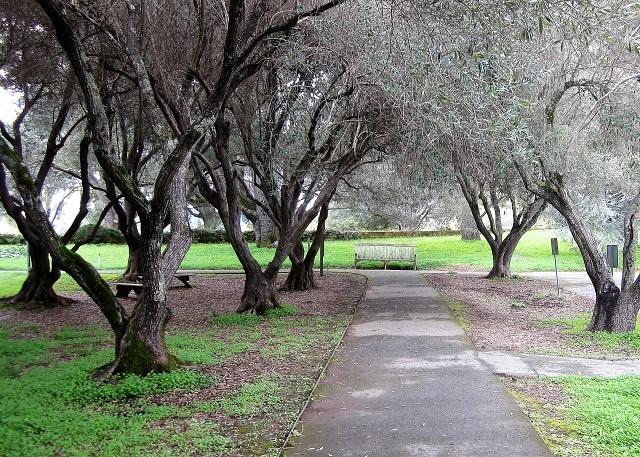 Сады Филоли3