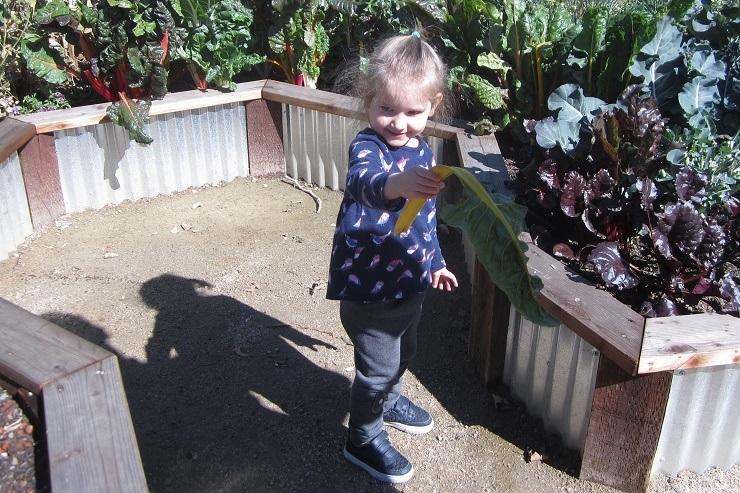 Детский музей в Сан-Хосе. Огород1