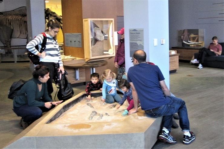 Детский музей в Сан-Хосе. Раскопки