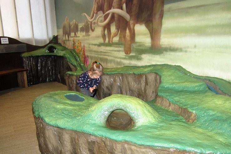 Детский музей в Сан-Хосе. Зона мамонтов2