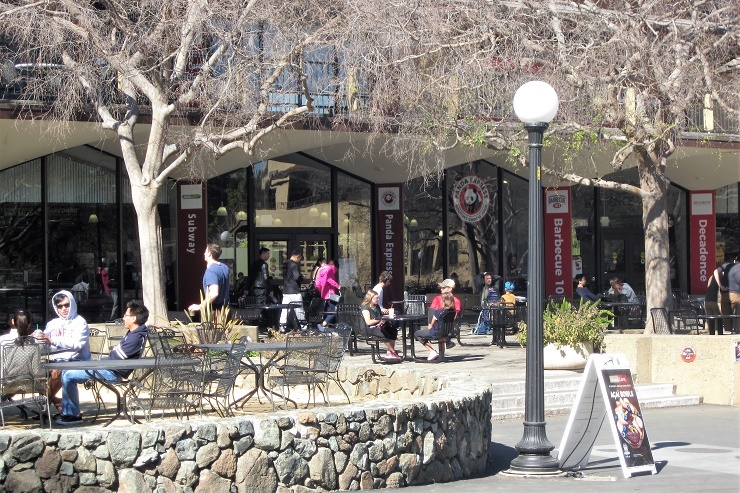 Стэнфорд. Кафе