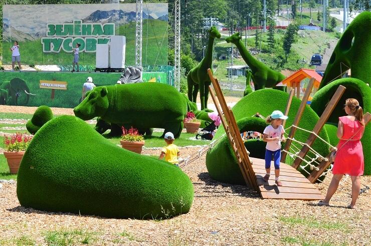 Хаски-парк в Красной Поляне2