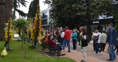 Цветочный фестиваль на улице Навагинской