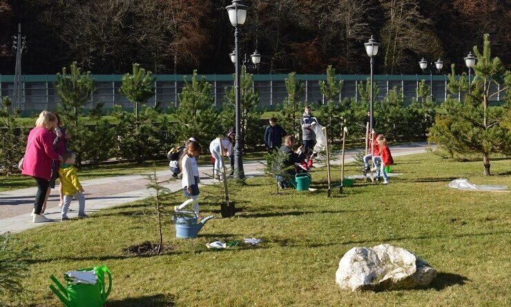 Дети сажают деревья на Всемирный день доброты